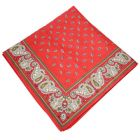 Red Pine Paisley Bandana with Patterned Border