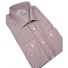 Wine Bengal Stripe Cotton Shirt
