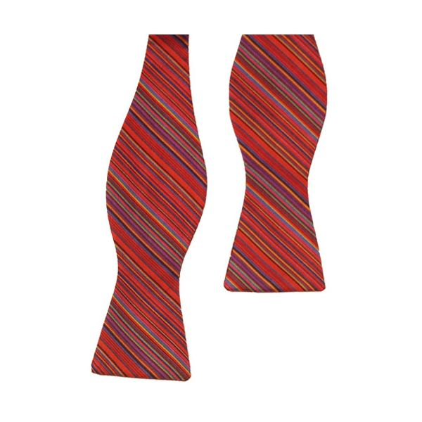 Red Diagonal Stripes Self Tie Bow Tie