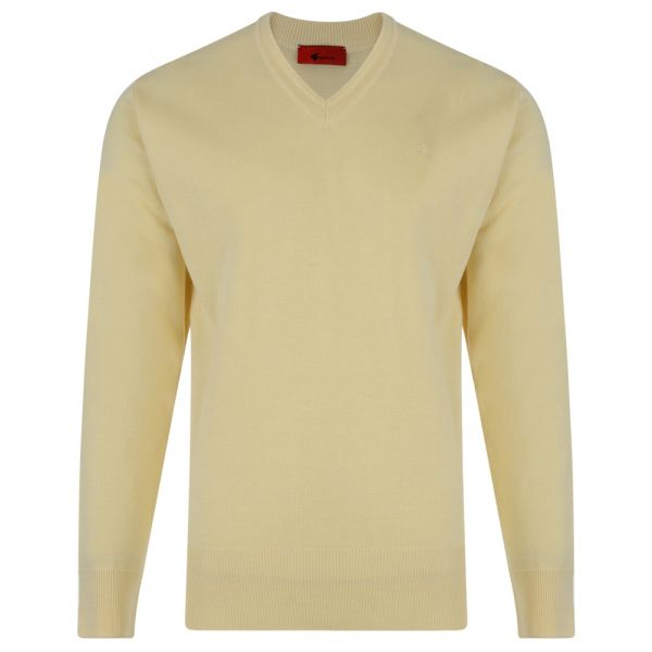 Gabicci V Neck Jumper in Corn Yellow