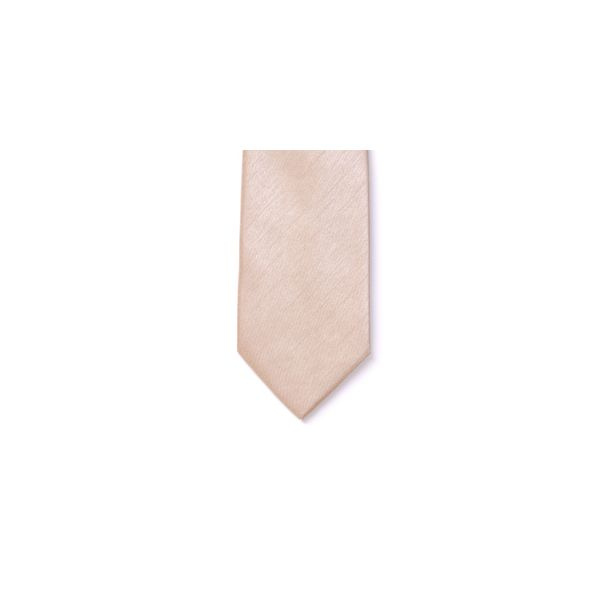 Champagne Polyester Shantung Boy's Tie