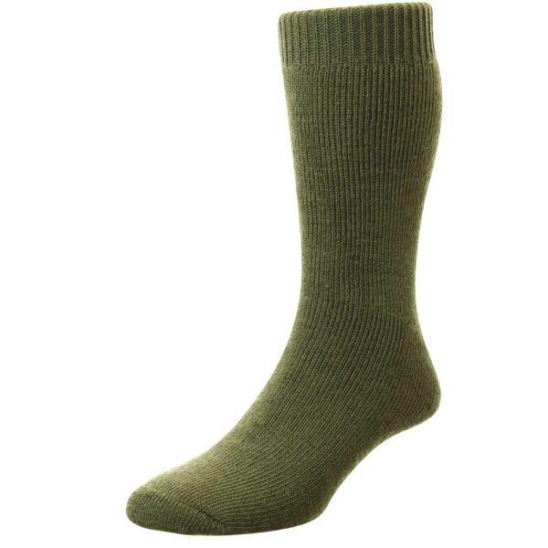 Olive Rambler Sock
